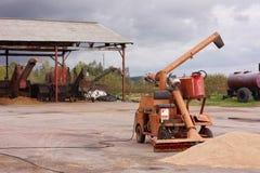 Grain de récolte mécanisée Image libre de droits