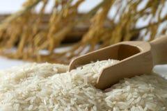 Grain de riz photos stock