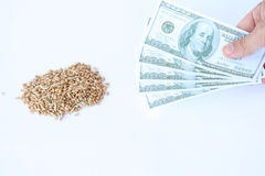 Grain and dollars Royalty Free Stock Images