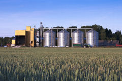 Grain dryer and wheat field Royalty Free Stock Image