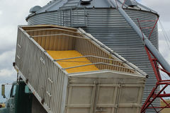 Grain Dumping Truck and Grain Bin Royalty Free Stock Photography