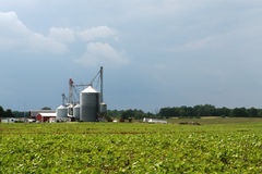 Grain Elevator. MidWest Michigan Grain Elevator, farm and field of beans before a rain storm royalty free stock image