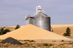 Grain elevator with grain wasted Stock Photography