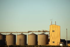Grain Elevator in late afternoon sun. Royalty Free Stock Photos