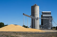 Grain elevator with pile of grain. A grain storage facility with piles of grain on the ground Stock Photos