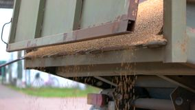 Grain falling from a truck. stock footage