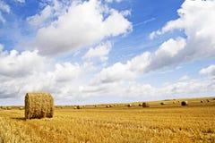 Grain field - autumn landscape royalty free stock photos