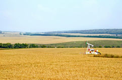 Grain field with oil pump Royalty Free Stock Images