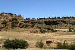 Grain fields and farms in Ethiopia. A Grain fields and farms in Ethiopia Royalty Free Stock Photos