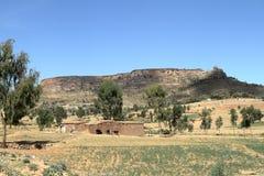 Grain fields and farms in Ethiopia. A Grain fields and farms in Ethiopia Stock Images