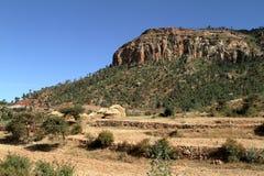 Grain fields and farms in Ethiopia. A Grain fields and farms in Ethiopia Royalty Free Stock Photo