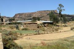 Grain fields and farms in Ethiopia. A Grain fields and farms in Ethiopia Royalty Free Stock Photography
