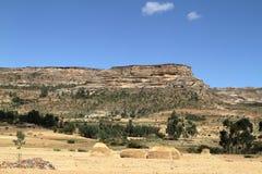 Grain fields and farms in Ethiopia. A Grain fields and farms in Ethiopia Royalty Free Stock Image