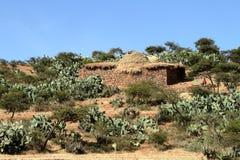 Grain fields and farms in Ethiopia. A Grain fields and farms in Ethiopia Royalty Free Stock Images