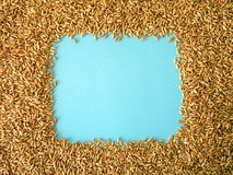 Grain frame Stock Photos