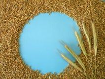 Grain Frame Royalty Free Stock Photo