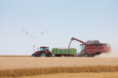 Grain harvest being brought in Royalty Free Stock Image