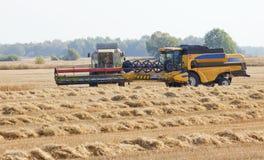 Grain harvest Stock Photography