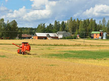 Grain Harvester Combine collecting from crops Royalty Free Stock Photography