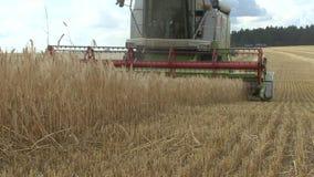 Grain harvester stock video