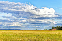Grain harvesting combine. Royalty Free Stock Photos
