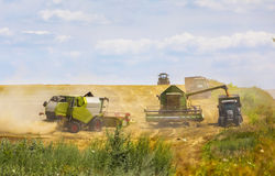 Grain harvesting combine on field in summer day Stock Photography