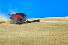 Grain Harvesting. A combine works a hillside harvesting grain in rural Oregon Royalty Free Stock Images