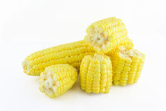 Grain maize,fresh corn Royalty Free Stock Photography