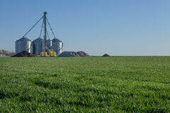 Grain mill in green field Stock Photo