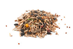 Grain mix for a rabbit. Grain mix for feeding of a rabbit on a white background stock photo
