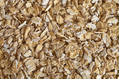 Grain oats Royalty Free Stock Image