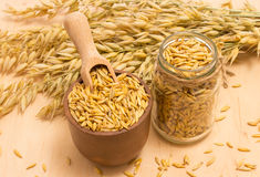 Grain oats on board Royalty Free Stock Images