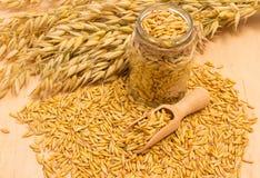 Grain oats on board Royalty Free Stock Photo