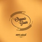 Grain organic vintage design background Stock Photography