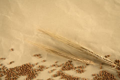 Grain on paper bacground. Grain on brown paper background Royalty Free Stock Image