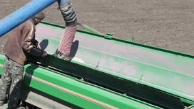 Grain is poured into the drill. Out of the truck near the tractor stock footage