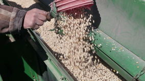 Grain is poured into the drill. Out of the truck near the tractor stock video footage