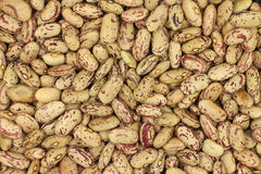 Grain raw mung beanbackground Royalty Free Stock Photo