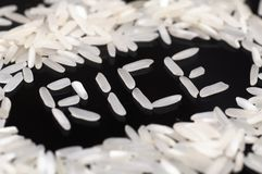 Grain of rice Royalty Free Stock Photography