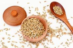 Grain Rye and Wheat. Studio Photo royalty free stock photos
