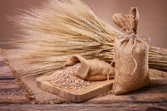 Grain in sacks and ears of wheat Royalty Free Stock Images