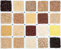 Grain Sampler Royalty Free Stock Images