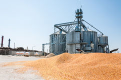Grain silo Royalty Free Stock Photography