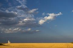 Grain silo behind corn field. Grain silo over a golden wheat field, Kansas, USA royalty free stock photos