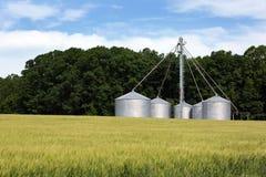 Grain Siloes de blé de Wnter Photo stock