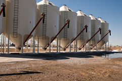 Grain silos Royalty Free Stock Photography