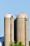 Grain Silos. Two grain storage silos on a farm Stock Photos