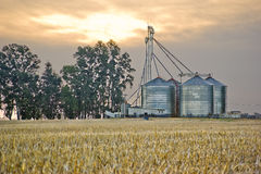 Grain silos and cropped wheat field Royalty Free Stock Images