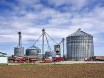 Grain silos on the farm. Agricultural grain elevator building for corn storage in silos Royalty Free Stock Photography