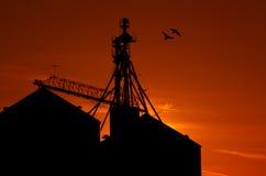 Grain Silos Sunrise Royalty Free Stock Images